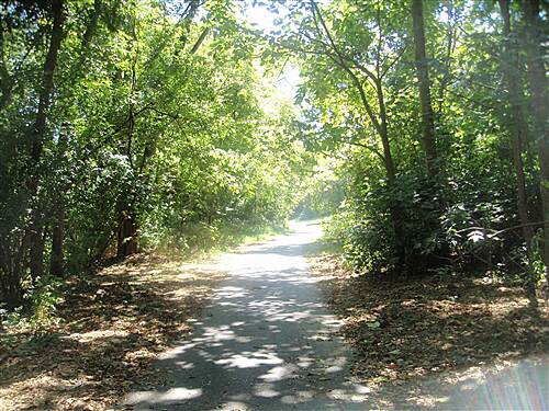 Conestoga Greenway Trail Conestoga Greenway As you approach the city limits, the trail veers away from the road and runs south through the woods towards Duke Street.