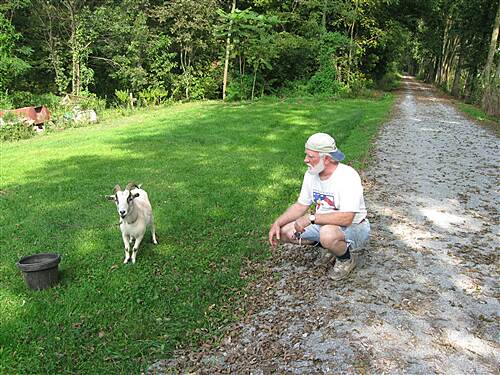 Conewago Recreation Trail Got your Goat we find new friends on the Conewago Trail