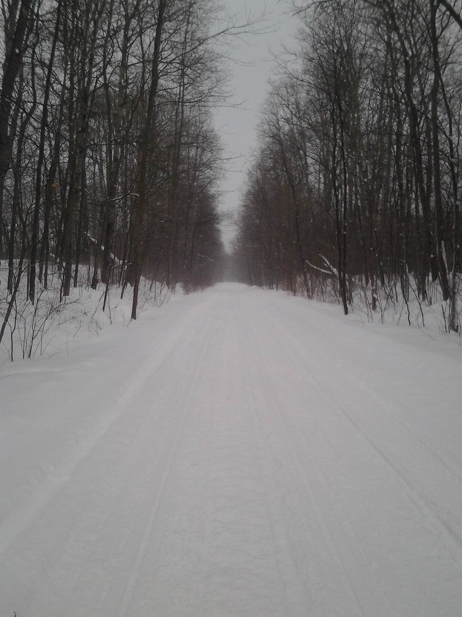 Corry Junction Greenway Trail Winter X-C Skiing