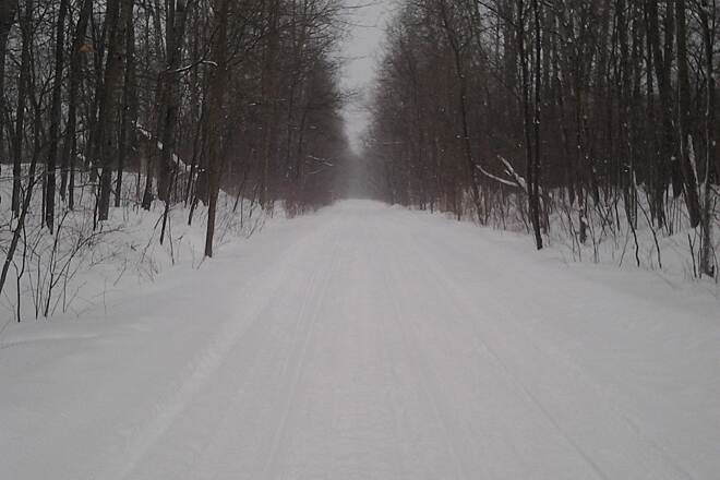 Corry Junction Greenway Trail Winter X-C Skiing North
