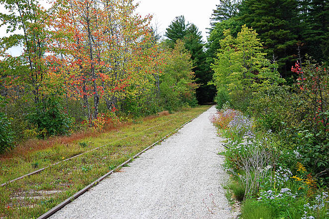 Cotton Valley Rail-Trail First Day of Autumn The first day of Autumn 2017 provided soft colors to the Cotton Valley Rail Trail.