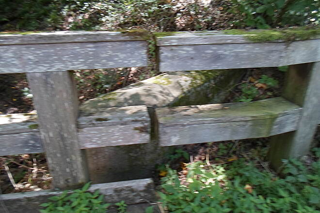 Creek Road Trail Creek Road Trail The abutments to the old, concrete bridge can be seen behind the wooden rails of the newer span.