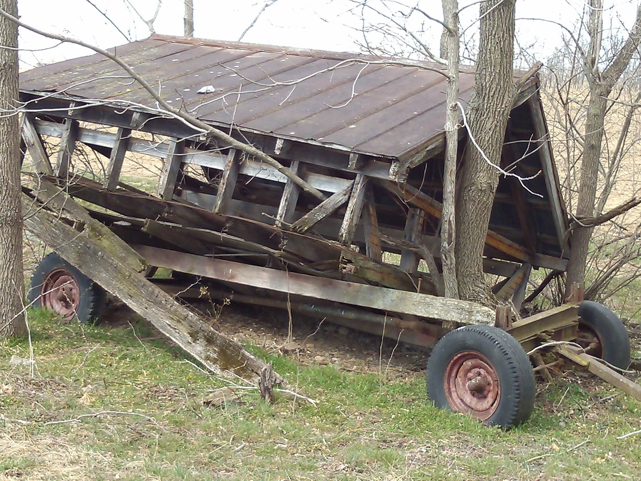 Cumberland Valley Rail Trail Old wagon with tree growed up inside it!!!