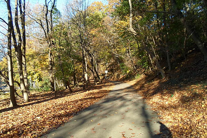 Cynwyd Heritage Trail Cynwyd Heritage Trail Colors of autumn, as seen in the woods near Belmont Ave. Taken Oct. 2015.