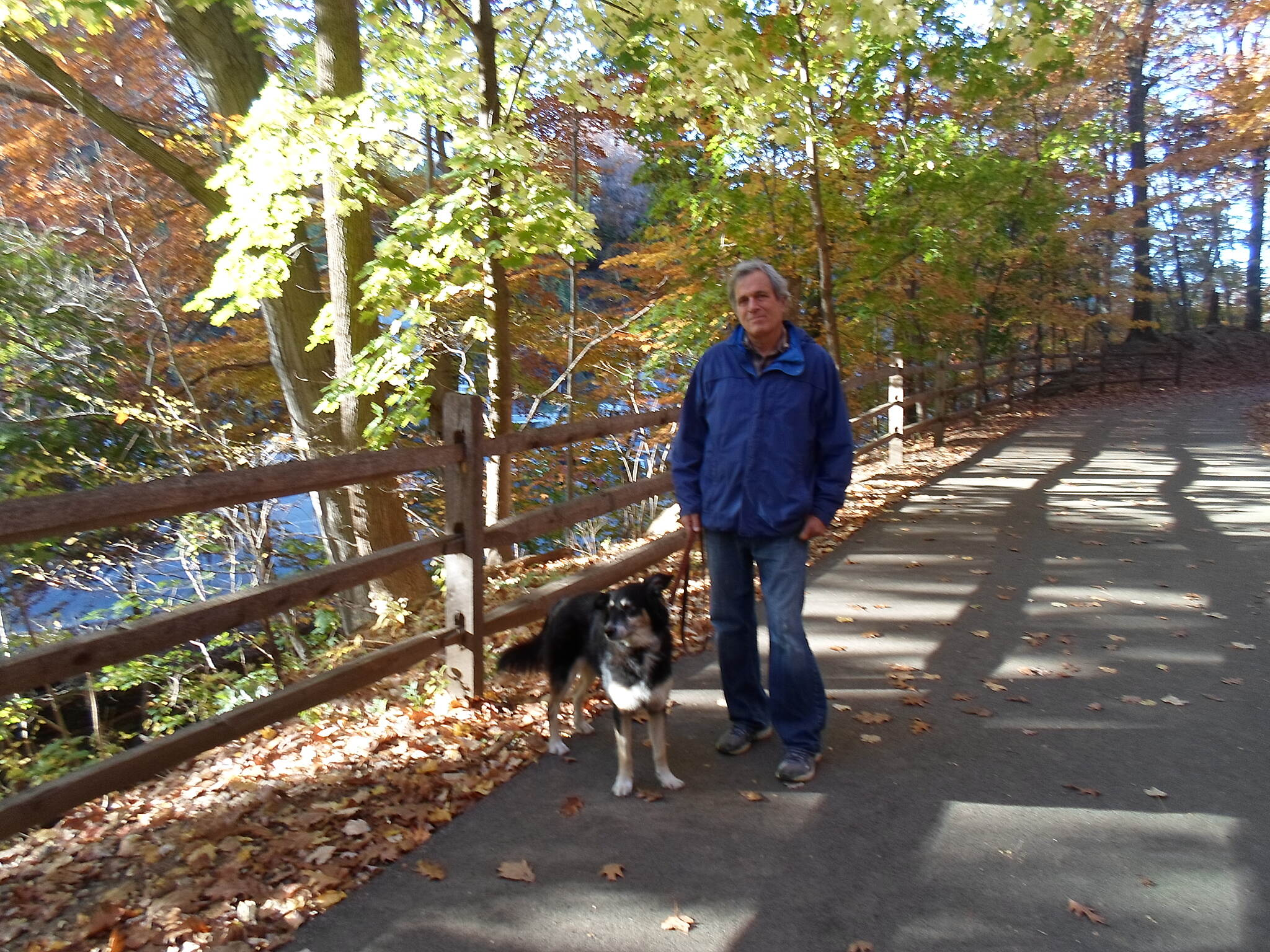 Cynwyd Heritage Trail Cynwyd Heritage Trail This man and his dog were out for a walk enjoying the fall foliage. Taken Nov. 2015.