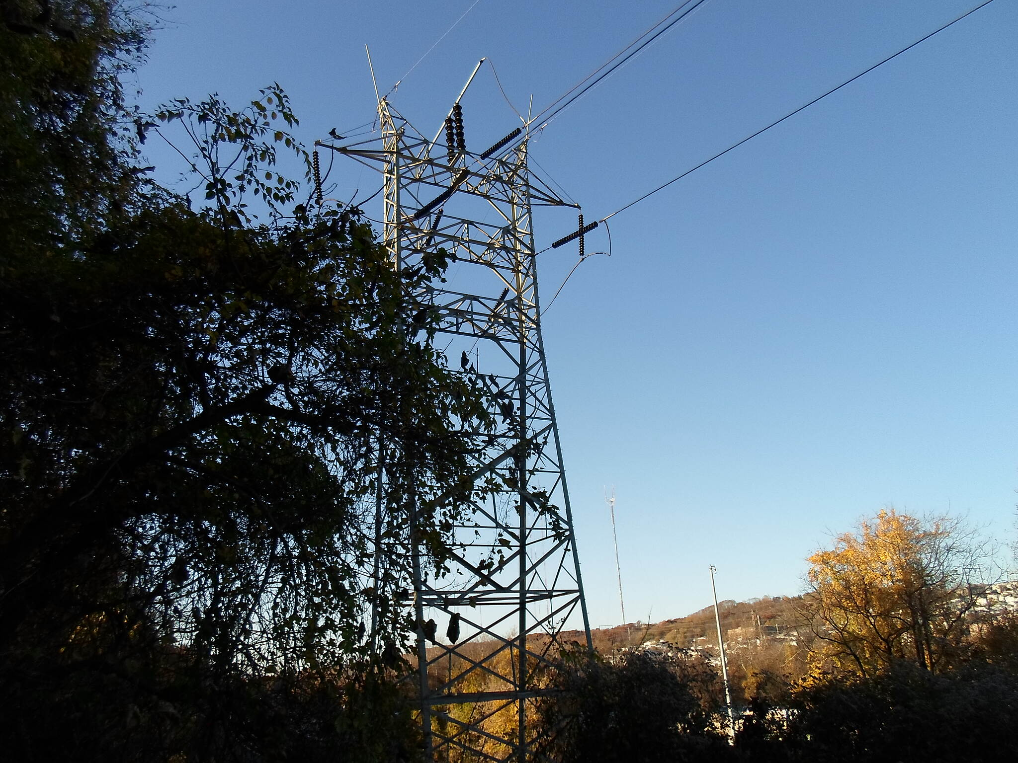 Cynwyd Heritage Trail Cynwyd Heritage Trail Transmission lines tower high above the trail near the Manayunk Trestle. Taken Nov. 2015.
