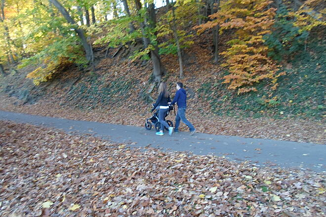 Cynwyd Heritage Trail Cynwyd Heritage Trail This couple was taking their baby for a walk on the trail just northwest of the Manayunk Trestle. Taken Nov. 2015.