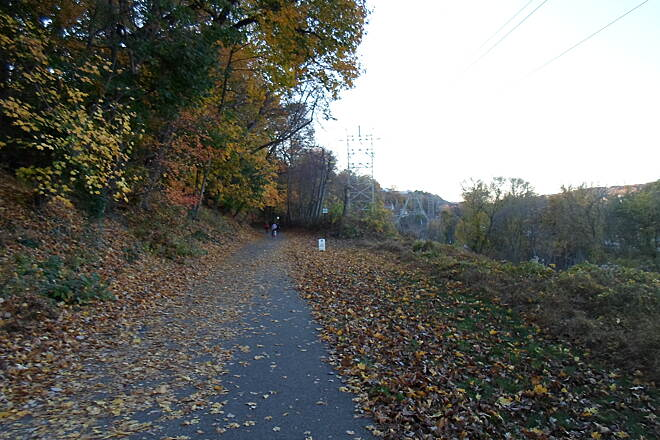 Cynwyd Heritage Trail Cynwyd Heritage Trail Autumn leaves on the trail northwest of the Manayunk Trestle. Taken Nov. 2015.