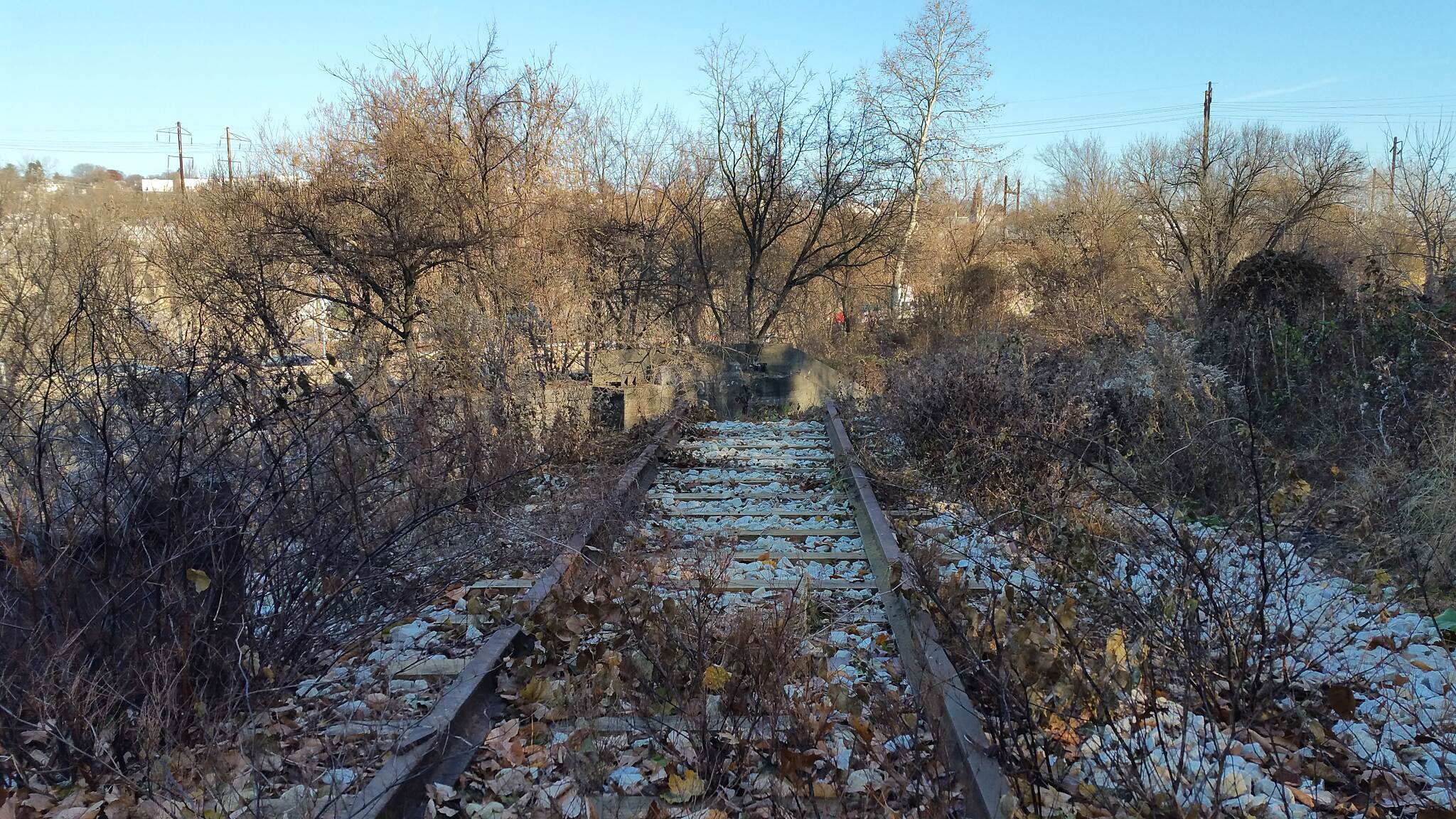 "Cynwyd Heritage Trail A ""Track"" Into The Past  location just up from Belmont Ave. This looks like the remains of the 'Switch Back Bridge' tracks."