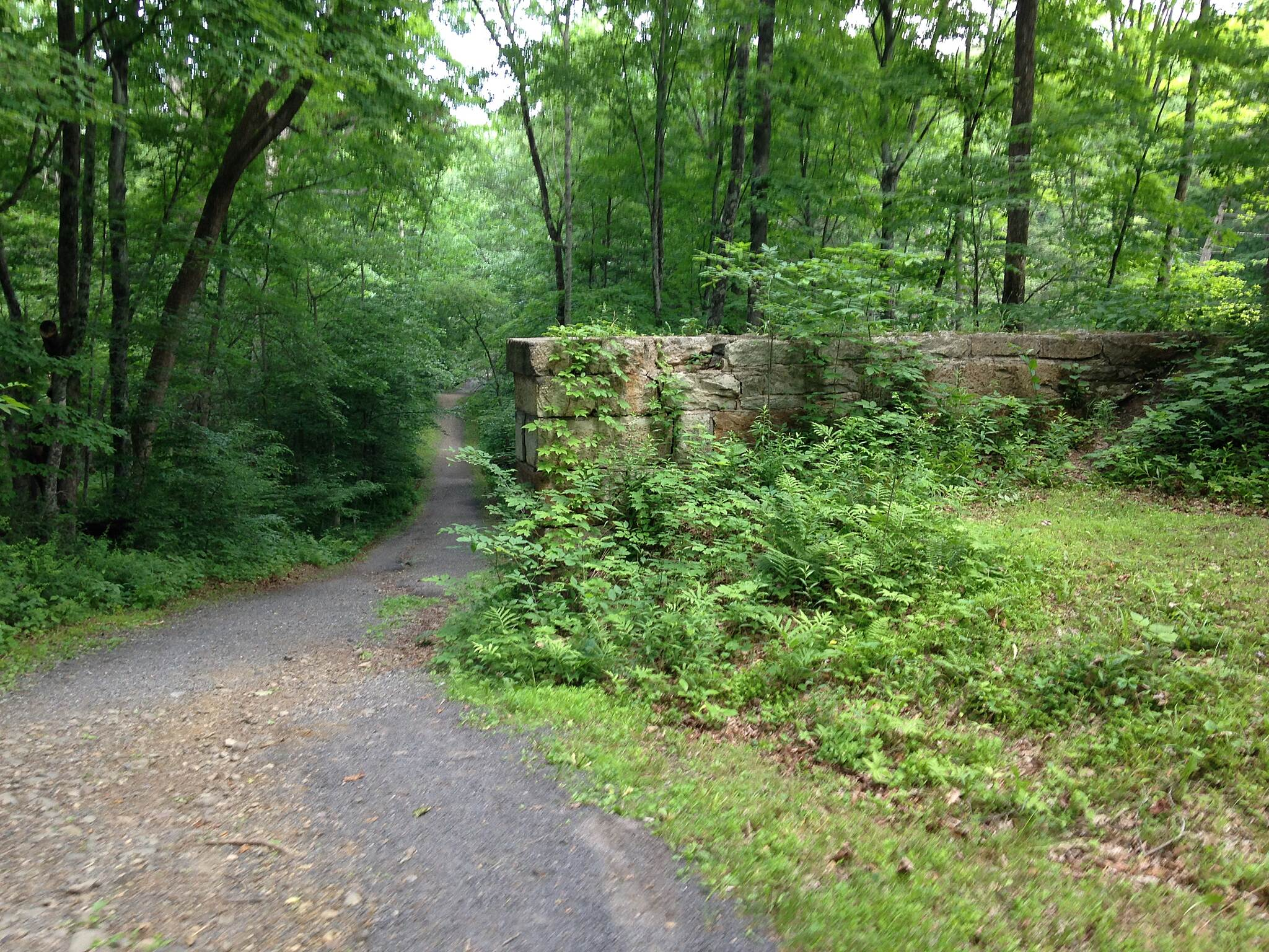 D & H Canal Heritage Corridor (O&W Rail-Trail) Stone Wall Trail-Side