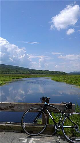 D & H Canal Trail - Bashakill Wildlife Management Area Bashakill Beautiful Day on the Bashakill - August 2011