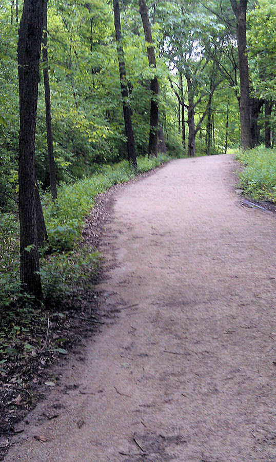 Danada and Herrick Lake Regional Trail Trail in the woods