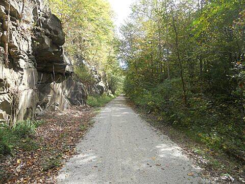 Dawkins Line Rail Trail The Narrows The Narrows, cliff on one side and a berm and deep ravine on the other.