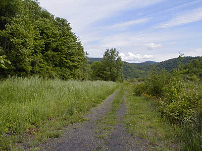 Delaware and Hudson Rail-Trail D&H RT - looking south along trail Just perfect weather for this.
