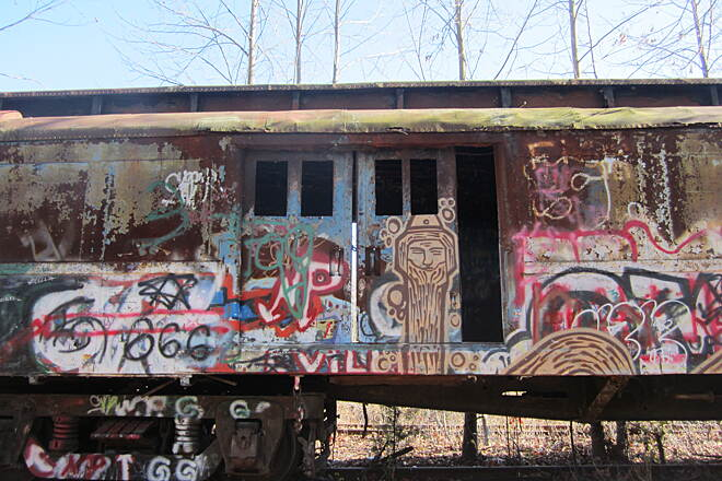 Delaware and Raritan Canal State Park Trail Graffiti Train