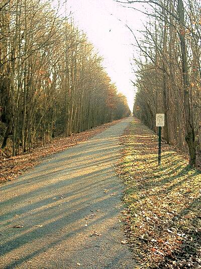 Delta Heritage Trail State Park Typical View View of the trail looking south from the Walnut Corner trailhead.