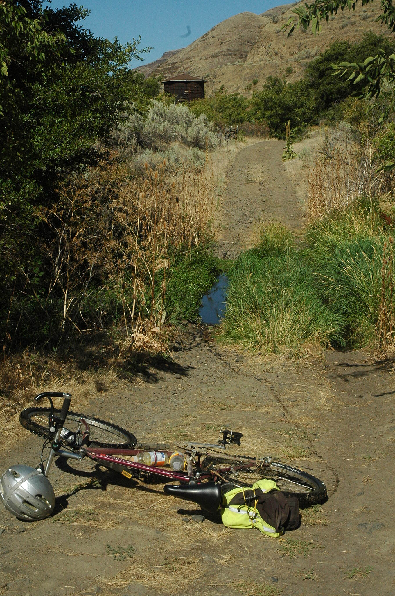 Deschutes River Railbed Trail Harris Ranch area Running water in August, lot's of wildlife too, what a wonderful ride