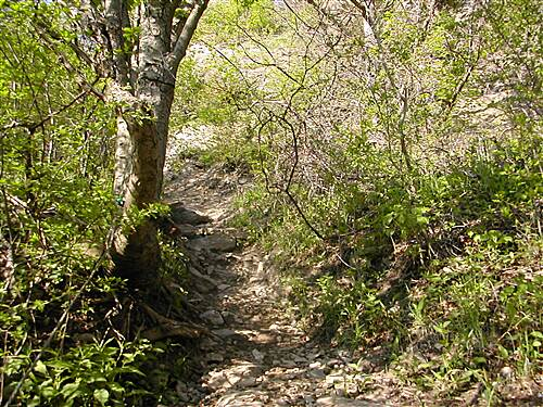 Devil's Hole Trail Another look up the trail