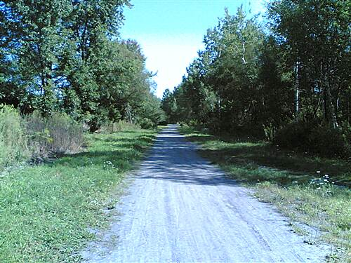 D&H Rail Trail Just North of Forest City - 000 Typical view on finished trail section