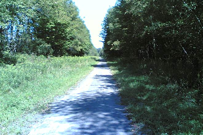 D&H Rail Trail More typical finished section - 005 Sunny and open