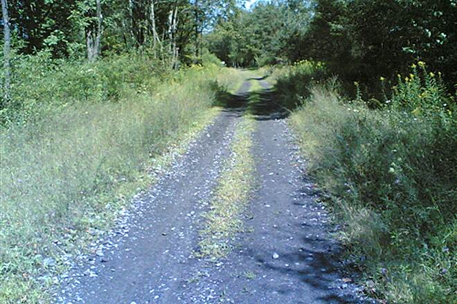D&H Rail Trail North of Herrick Center - 007 Cinders and gravel