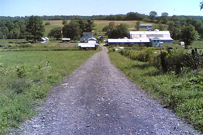 D&H Rail Trail Farm View Again - 010