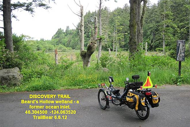 Discovery Trail THE DISCOVERY TRAIL Beard's Hollow, former ocean inlet and now swamp