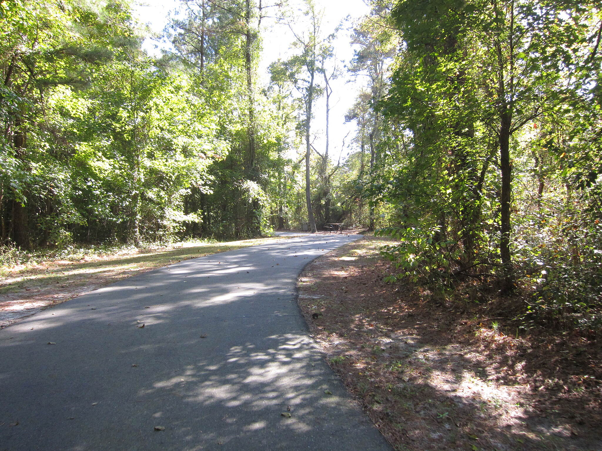 Dismal Swamp Canal Trail (NC) October Recumbent Trike Ride
