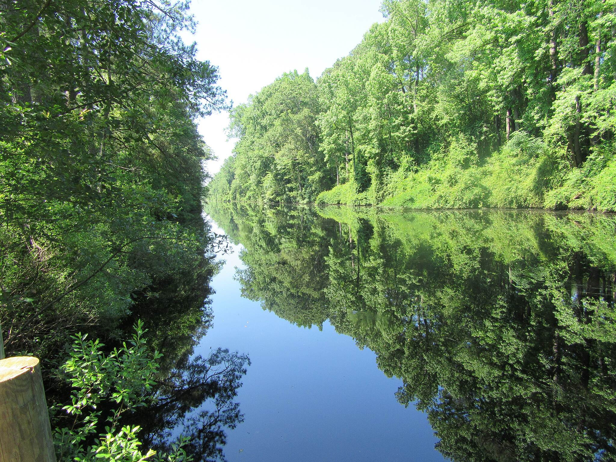 Dismal Swamp Canal Trail (VA) The Dismal Swamp Canal Took this photo on June, 12, 2015.