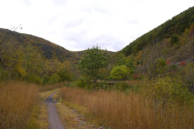 D&L Trail D&L Trail Lehigh Canal (North) October 10, 2009 View north of trail.