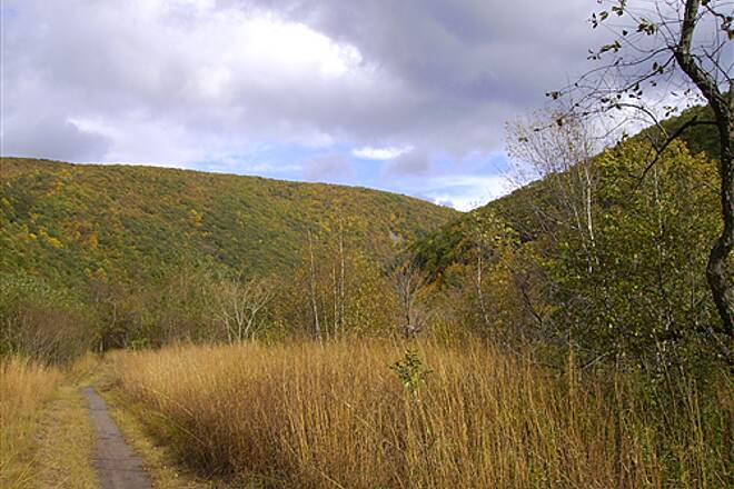 D&L Trail D&L Trail Lehigh Canal (North) October 10, 2009 View looking south on trail.