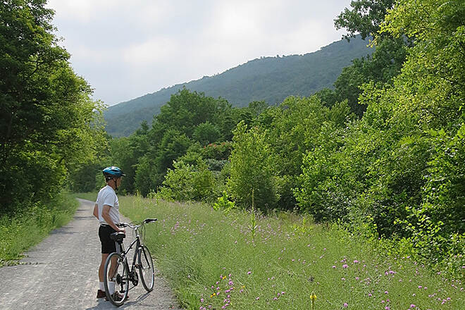D&L Trail Trail near Lehigh Gap On the D&L trail near the Lehigh Gap Nature Center July 2014