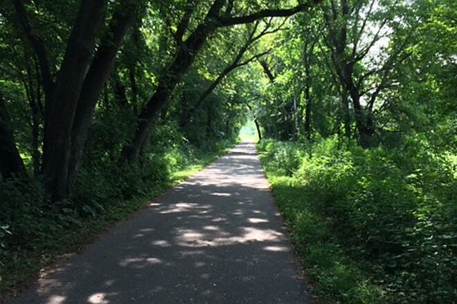 Douglas State Trail Some of the shaded path Much of the Douglas Trail is shaded and wooded.  This section is on the trail just north of 55th street in Rochester, looking south from where you join the trail after you circle the ponds north of the parking lot.