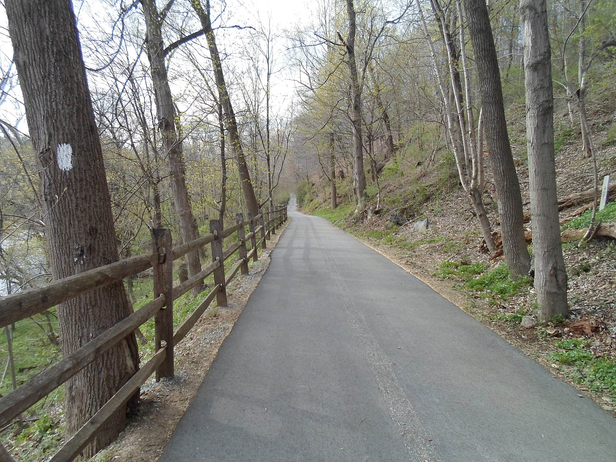 East Branch Brandywine Trail East Branch Brandywine Trail Following the old trolley grade south of Harmony Hill Road. Taken April 2015.