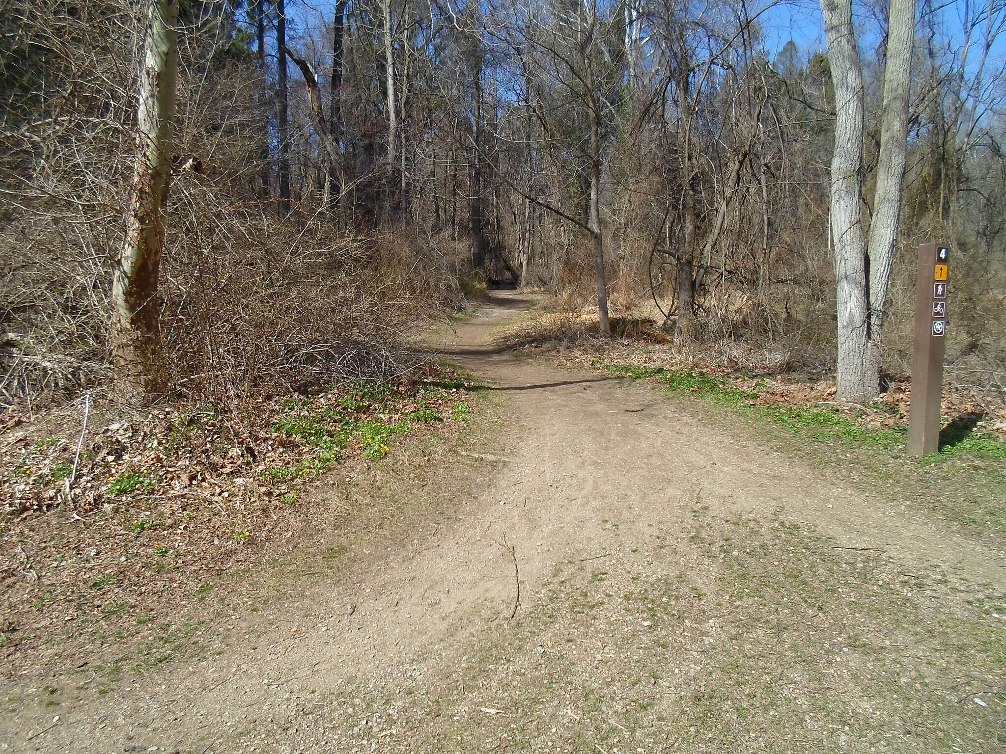 East Branch Brandywine Trail East Branch Brandywine Trail Immediately east of the Brandywine, two dirt paths branch off the main greenway. These paths are best suitged for mountain bikes and those desiring a more challenging hike.