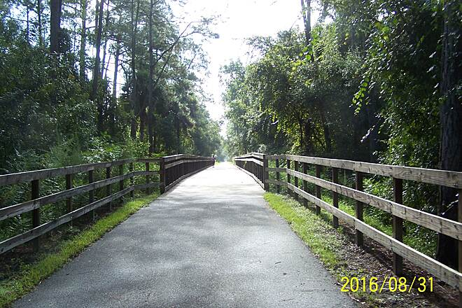 East Central Regional Rail Trail Boardwalk East of Green Spring Fences and boardwalk in a hammock east of Green Spring