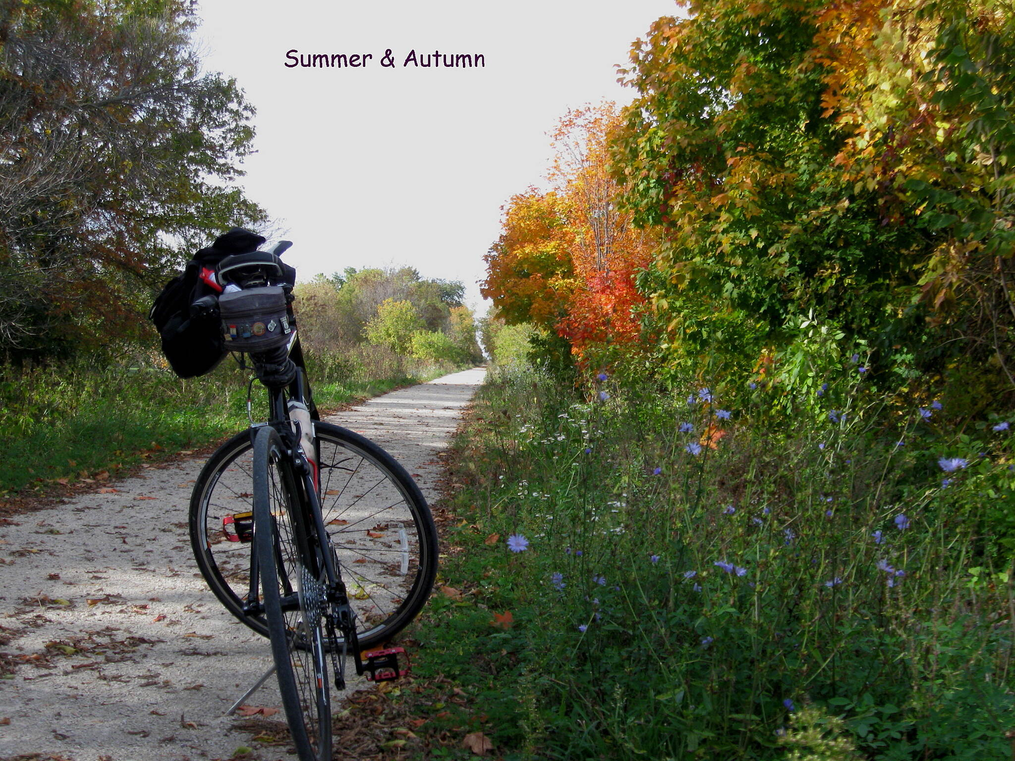 Eisenbahn State Trail Summer & Autumn