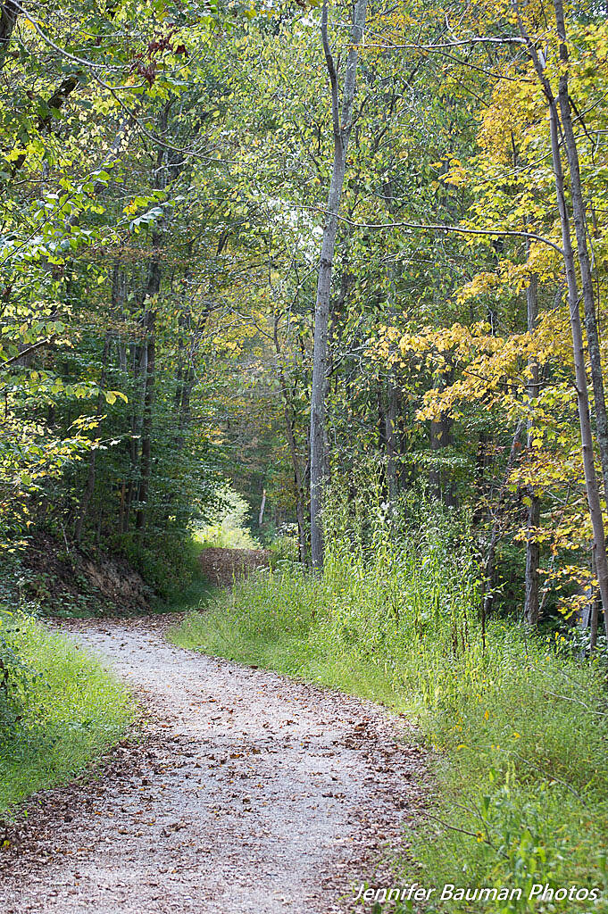 Elk River Trail Elk River Trail Widened Elk River Trail, Cookskin Park, Charleston, WV