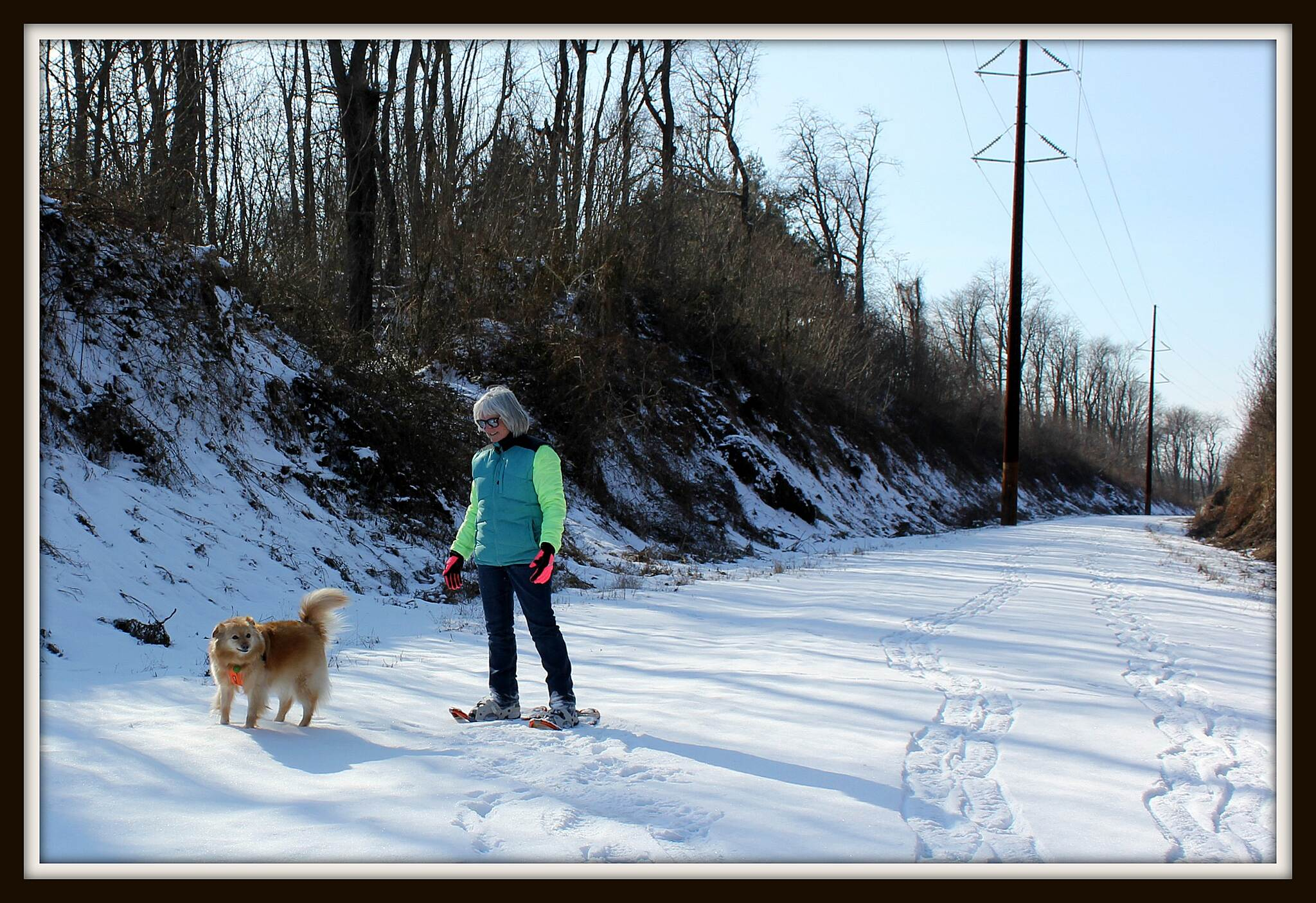 Enola Low Grade Trail Snowshoeing  Snow get out there! Snow just means one more way to enjoy the trail!