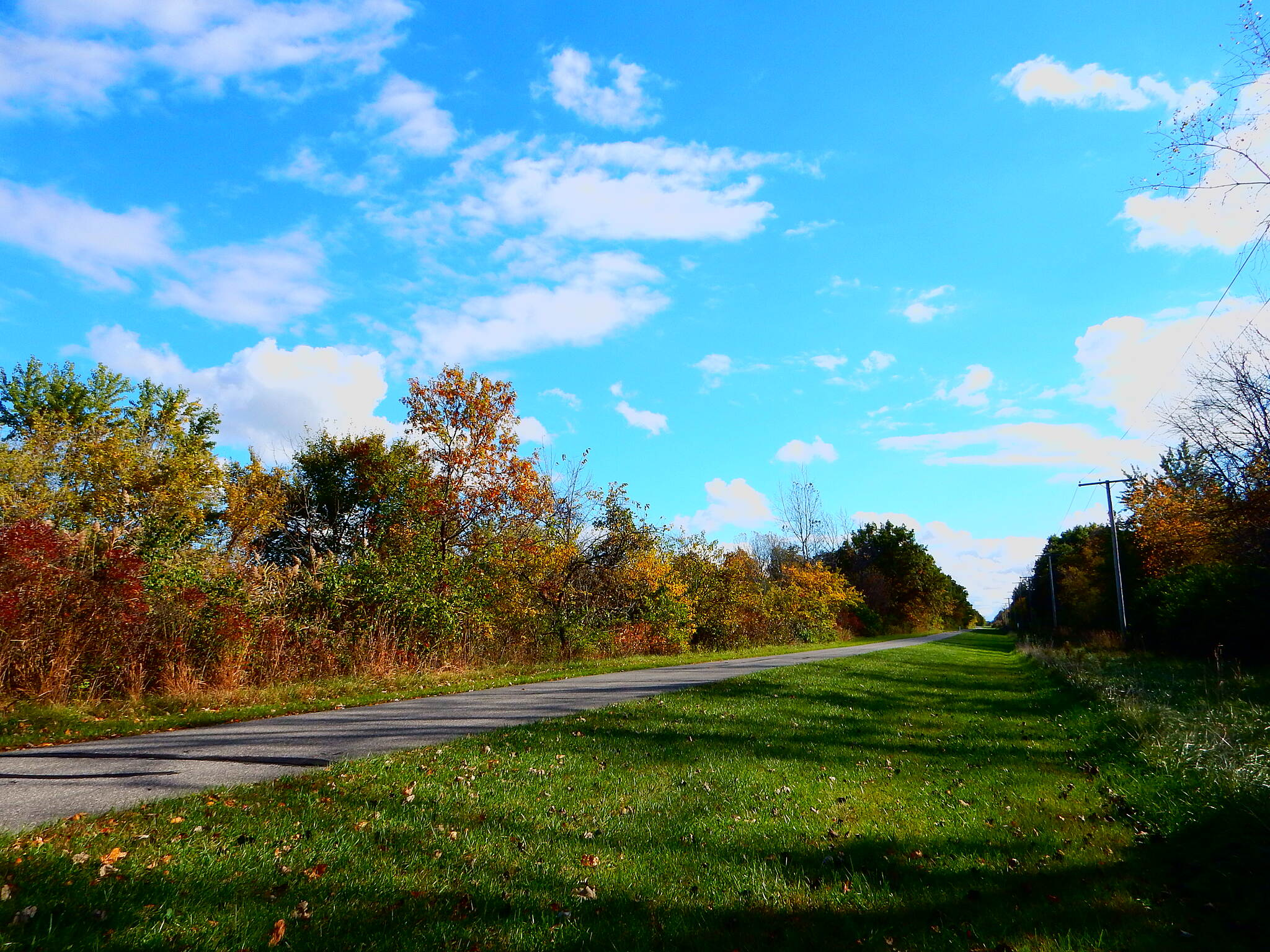 Erie Lackawanna Trail Fall on the trail. Taken in the Schererville/Route 30 area on 10-21-16