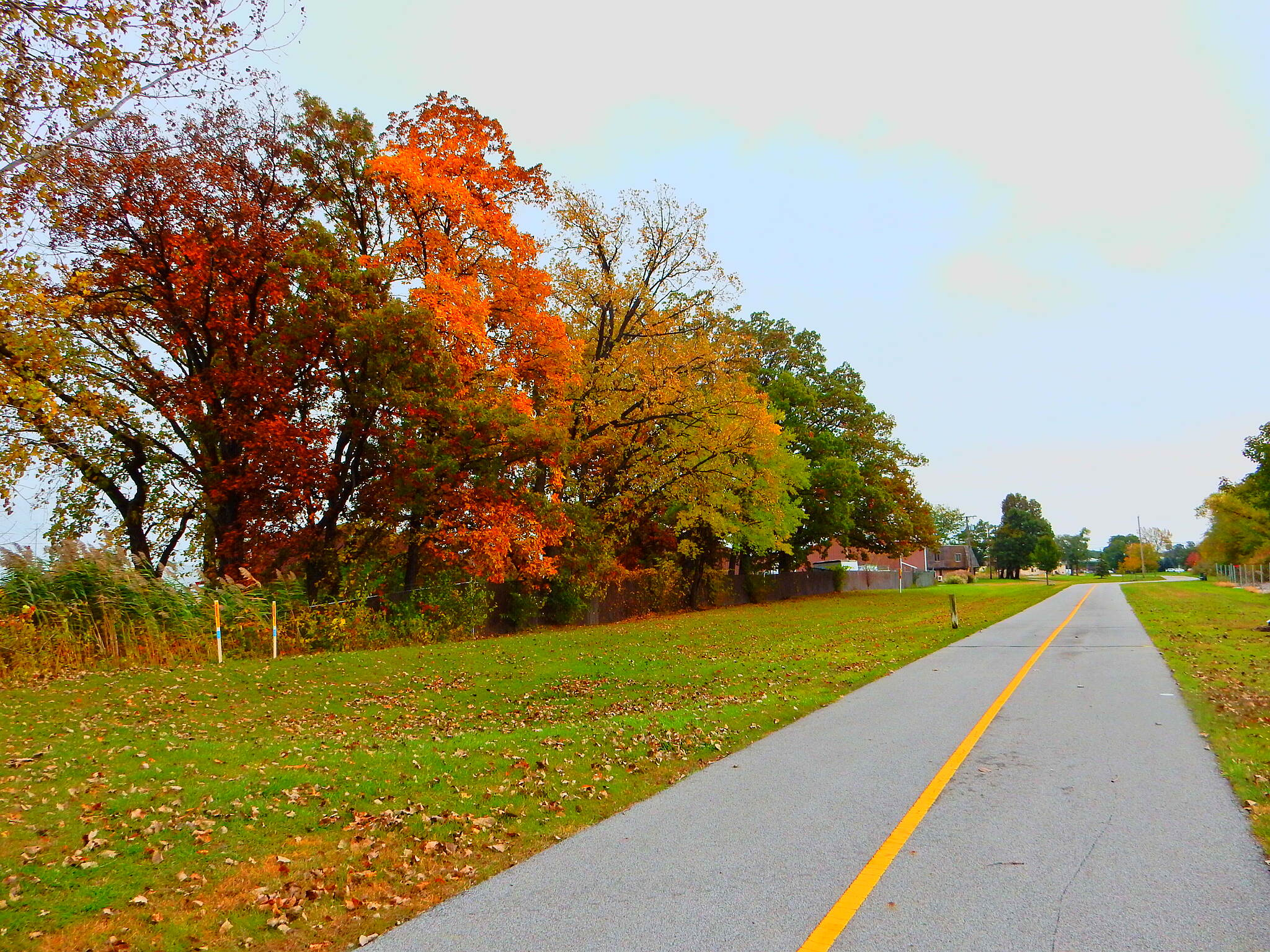 Erie Lackawanna Trail Highland area. North of Downtown Highland. Taken 10-28-16.