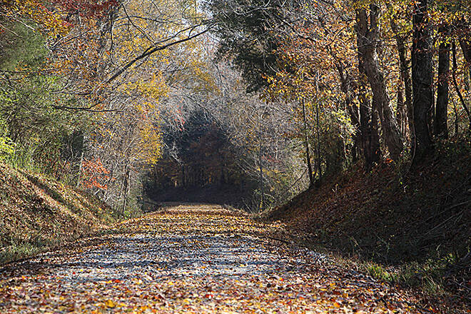 Eureka Trail Gravel trail through woodlands Photo courtesy of Athens Parks and Recreation