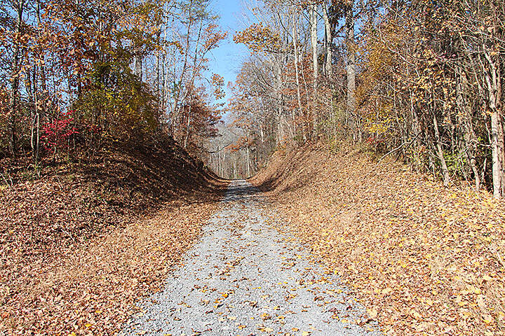 Eureka Trail Fall splendor on the trail Photo courtesy of Athens Parks and Recreation