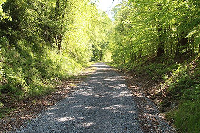 Eureka Trail A cool, shady trail for summer Photo courtesy of Athens Parks and Recreation