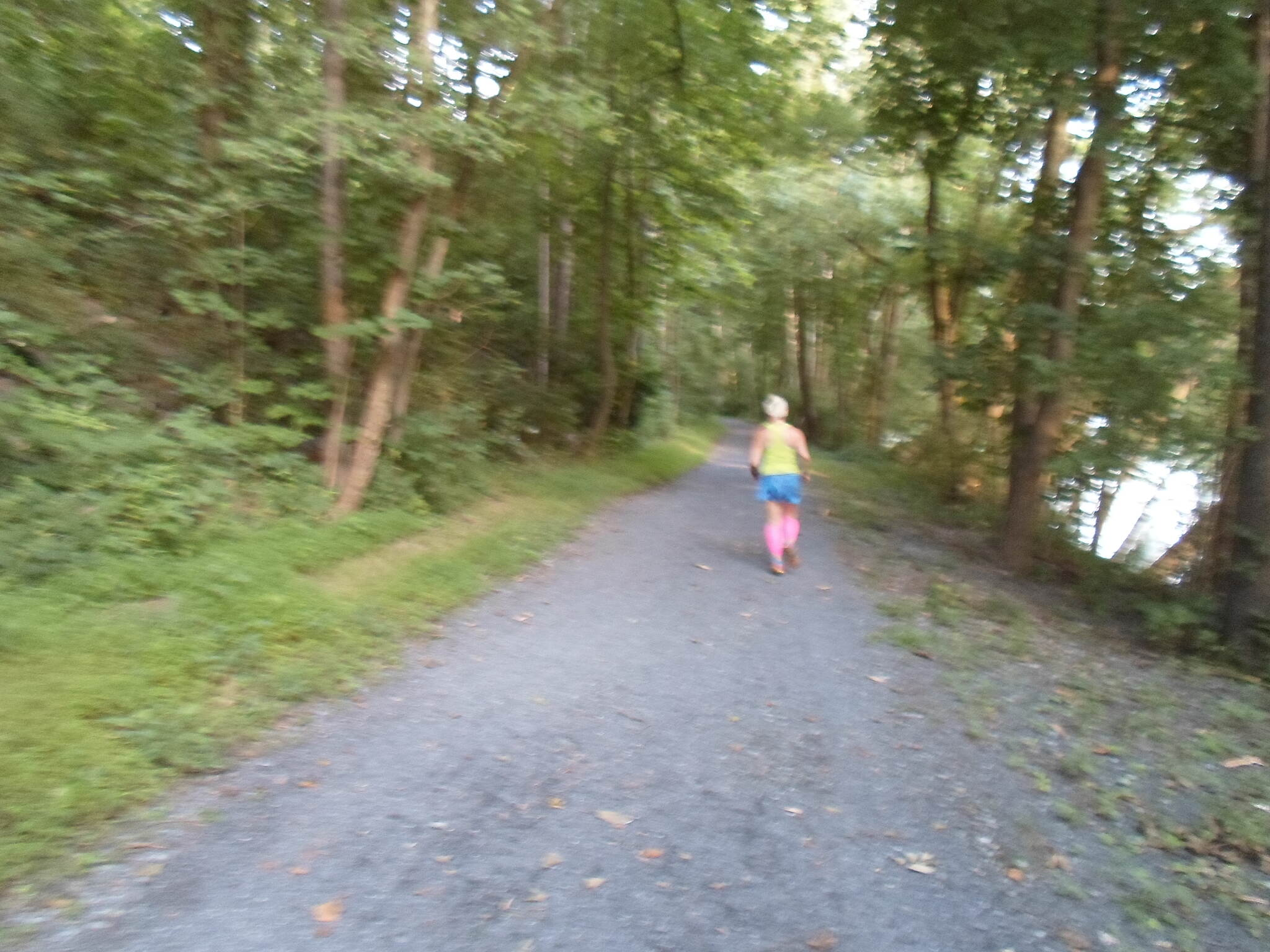 Exeter Scenic River Trail Exeter Scenic River Trail Summer evening jog. Taken July 2014.