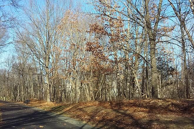 Farmington Canal Heritage Trail In Connecticut Traillink