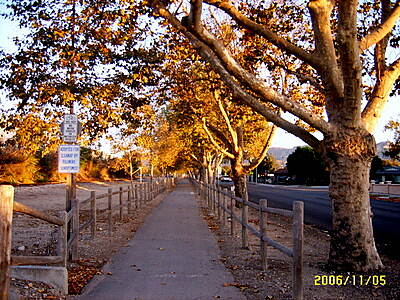 Fillmore Bike Path Fall Colors Trail West bound.