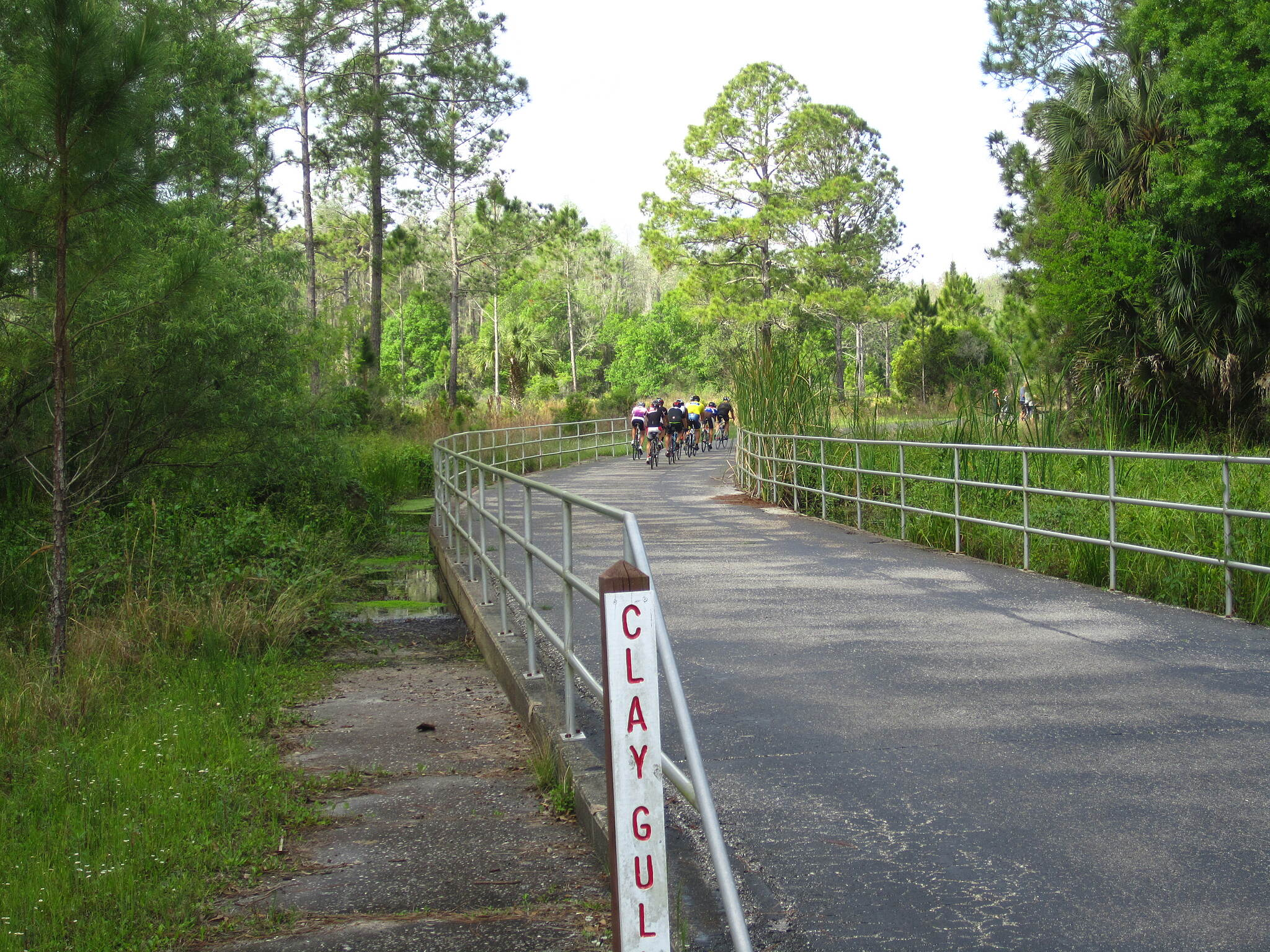 Flatwoods Park Trail Clay Gully Road racers.