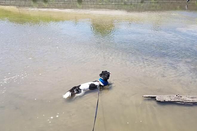 Fort Worth Branch Trinity River Trails Texas Trails