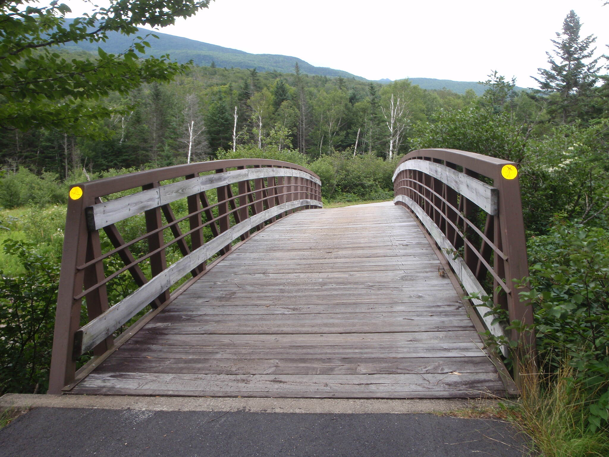 Franconia Brook Trail Bridge One of many bridges criss crossing Pemigewasset River
